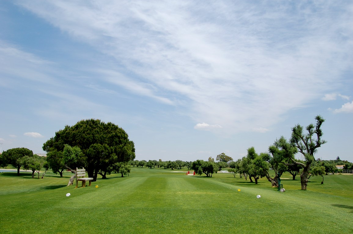 DSC_0177_golf